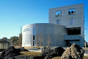 The Tohoku University Musuem